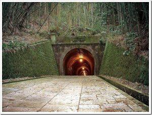 マツコの知らない世界「トンネルの世界」のネタバレと感想とまとめ。
