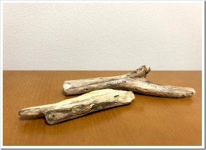 マツコの知らない世界「流木インテリアの世界」のネタバレと感想とまとめ。
