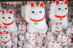 マツコの知らない世界「かわいい招き猫の世界」のネタバレと感想とまとめ。